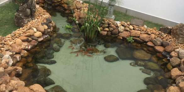 ecofish-dep-lago2